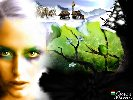 16grass_seasons-2000.jpg