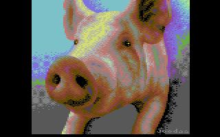 c64-Joodas-psychopig2.png